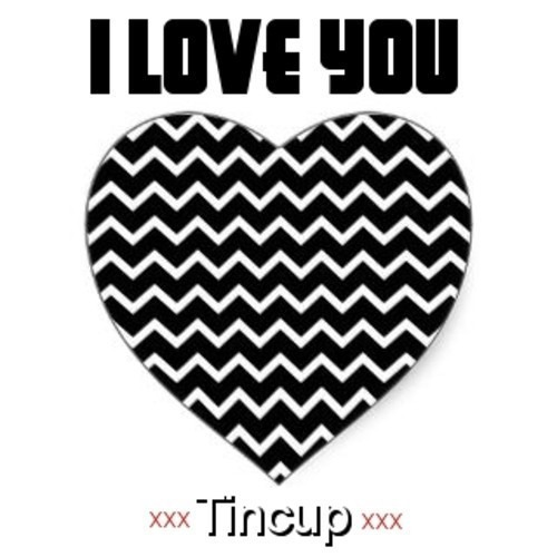 I Love You by Tincup