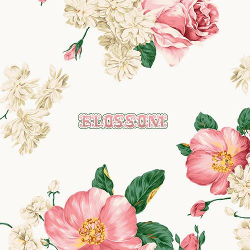 Tiger Tsunami - Blossom (WoodysProduce Bootleg Remix)