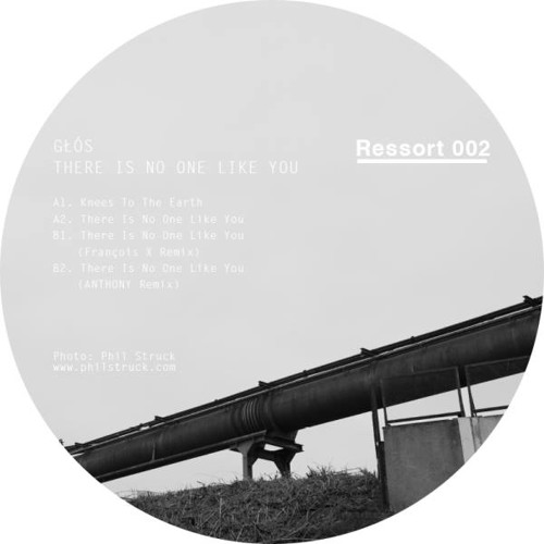 RSI002:  Głós ‎- There Is No One Like You (incl. Remixes by François X and Anthony)