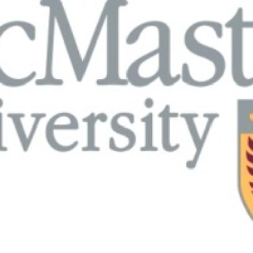 Rick Zamperin speaks with McMaster's Dr. Ishwar Puri