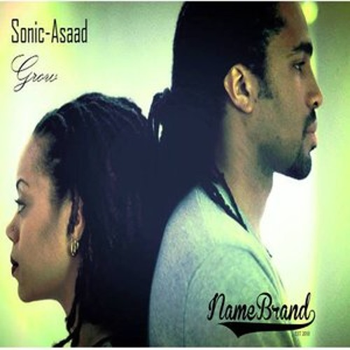 Sonic Asaad - Grow (Prod. by L.David)