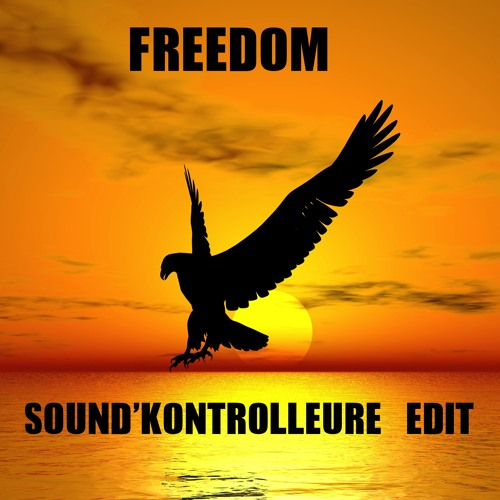 Looking For Freedom (Sound'Kontrolleure Edit) FREE DOWNLOAD!