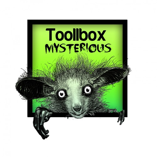 CFR034 : Toollbox - The Mysterious Trip (Original Mix)