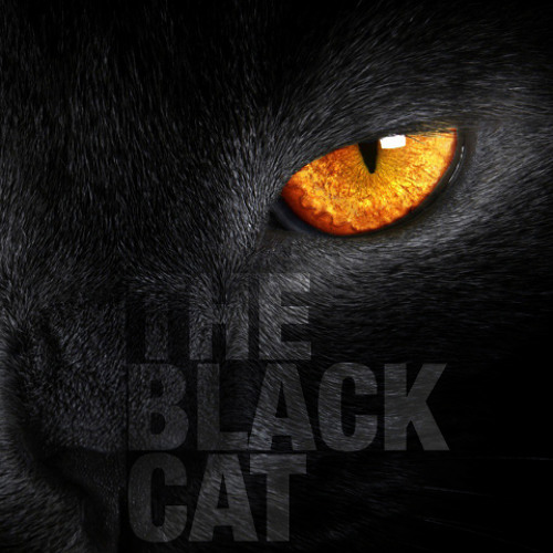 The Black Cat (Preview)