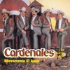 Cardenales De Nuevo Leon Nuevamente El Amor 1996 Portada del disco