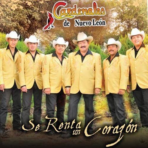Cardenales De Nuevo Leon Se Renta 2009