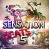Sensation Beats 5 ( Dj Carlos Lopes )