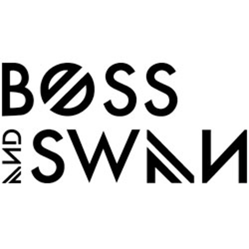 Mumford & Sons - I Will Wait (Boss & Swan Cover)
