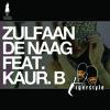 Zulfaan De Naag (Instrumental) clip