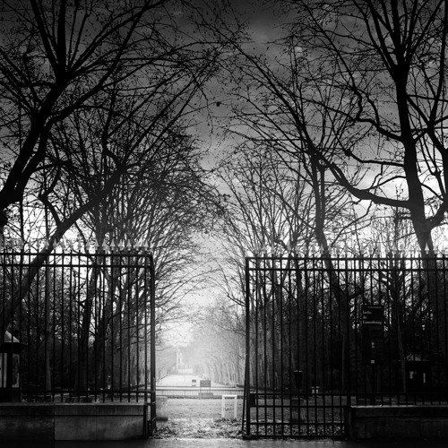 1D6 & Darkside - Le Locataire