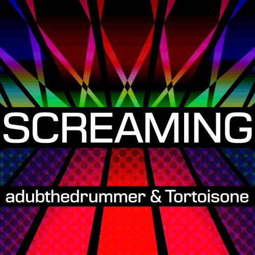 Screaming [adubthedrummer & Tortoisone]