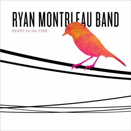 Ryan Montbleau Band - I Can't Wait