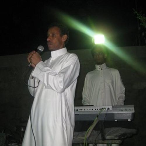 حفلة البيسمبيس 2013 ليله طه حسين