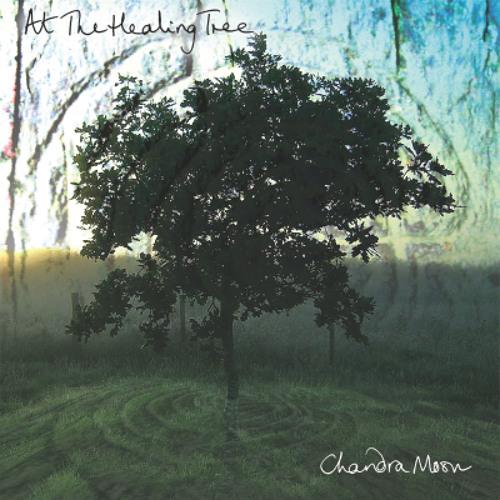 At The Healing Tree