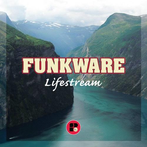 Funkware - Pineapple Circus (Clip) (Soul Deep Recordings)