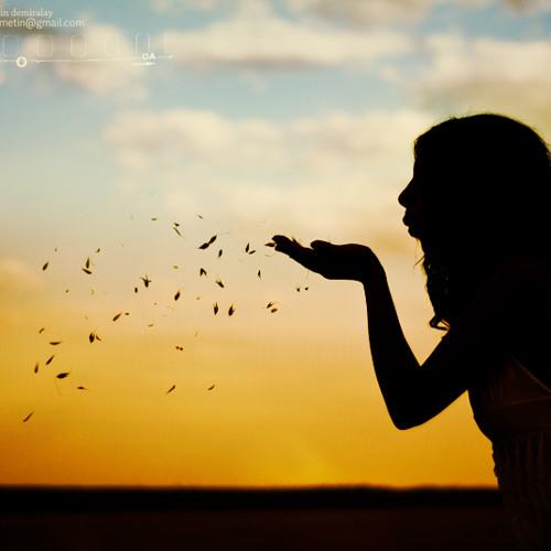Fiersa Besari - Edelweiss (cover)