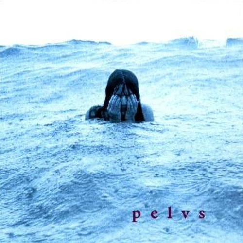 Pelvs - Trippy
