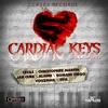 CARDIAC KEYS RIDDIM DJ SYKE LAVA GROUND