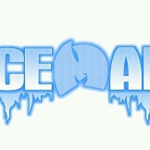 DJ Iceman -Dj Rondevu Rant