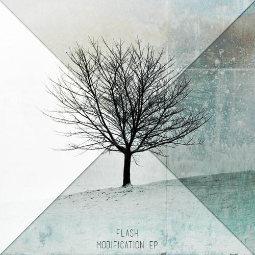 FLASH - 11. 흰색과 검정