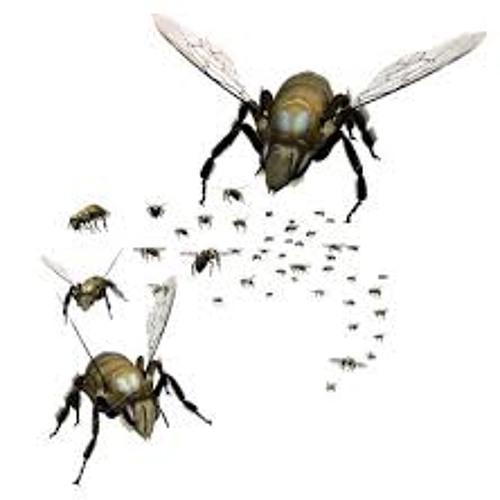 Deadly Avenger - Swarm - Dark Seed Mix