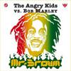 THE ANGRY KIDS - Mr Brown (Holly & Mappa DJ Rmx)