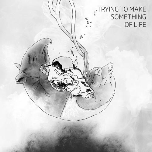 A2 - Tapirus - Trying To Make Something Of Life