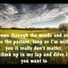 Big Green Tractor - Jason Aldean (Acoustic cover)