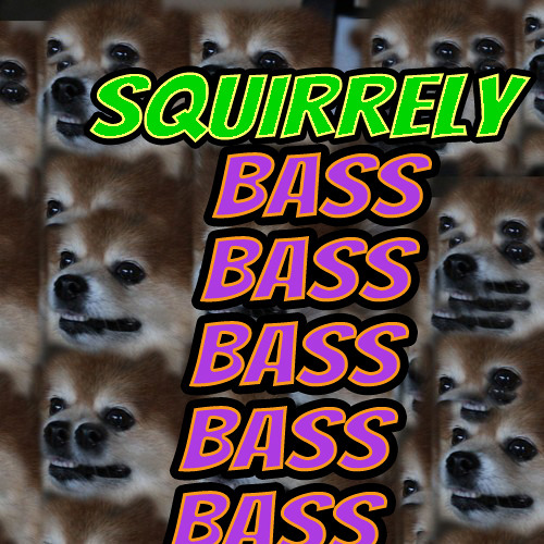 A Squirrely Deep House Mix