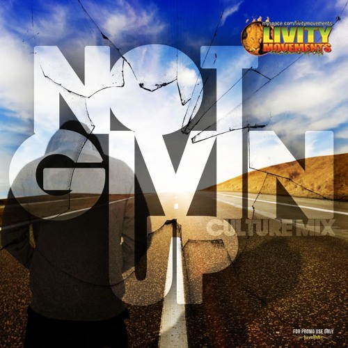 NOT GIVIN UP CULTURE MIX 2013