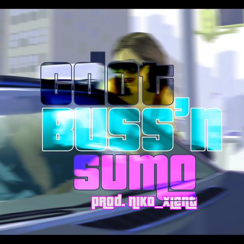 Cdot X Sumo - Buss'n