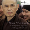 Thich Nhat Hanh — Mindfulness, Suffering, and Engaged Buddhism mp3