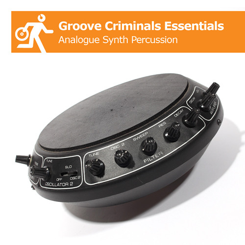 Groove Criminals Essentials - Analogue Synth Perc Demo