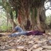 Alif Allah Chambay Di Booti- Kalam By Hazrat Sultan Bahu mp3