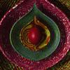 Heal (The Separation) [U-Matic Idol-Istic Mix]