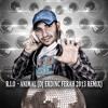 R.I.O  - Animal (DJ Erdinc Ferah 2013 Remix)