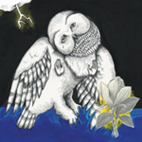 Songs: Ohia - Farewell Transmission (Demo)