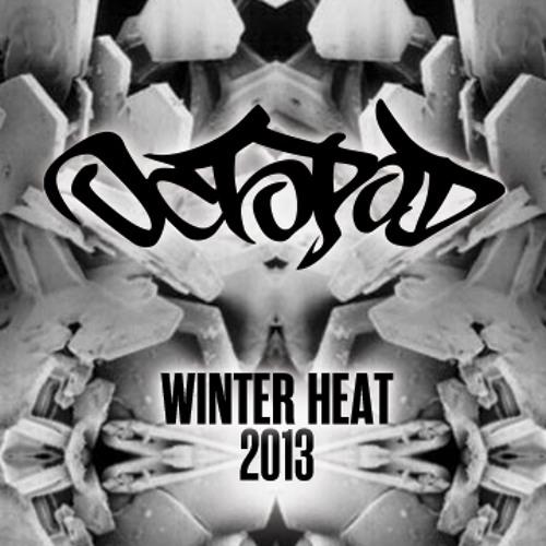 Octopod- Winter Heat Promo Mix 2013