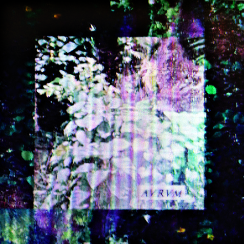 Birdland 4 / Indvstry (Free Digital via Contemporary Energy)