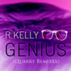 R. Kelly - GENIUS (QUARRY Remixxx) [FREE DOWNLOAD]