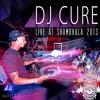 DJ CURE Live At Shambhala 2013