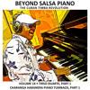 El Charanguero Mayor (tumbao) - Tirso Duarte (Beyond Salsa Piano Vol.14)