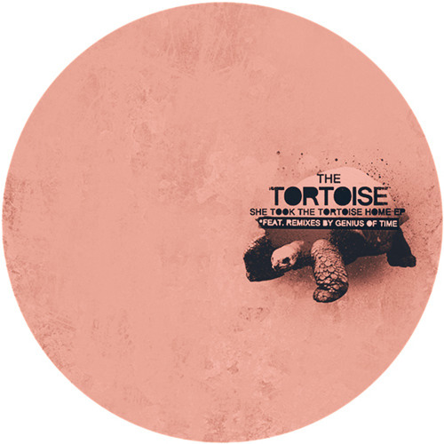 The Tortoise - She Took The Tortoise Home (Genius Of Time remix)