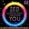 Seb Skalski ft. Donald Sheffey - I Am Over You - Spiritchaser Remix