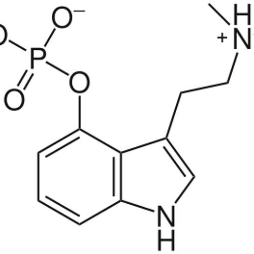 Noianiz - The First Dephosphorylation 2003