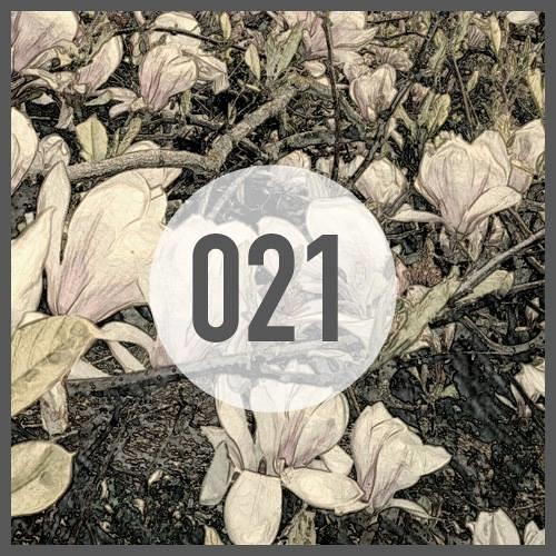 PLAY IT LOUD Podcast 021 By Scheinizzl