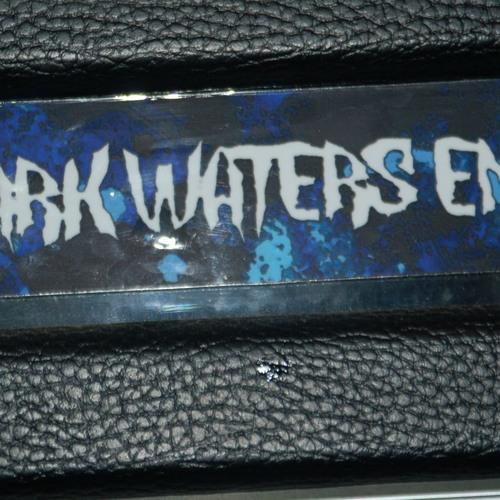 DARK WATERS END - Empty Skies