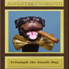 TRIUMPH the INSULT COMIC DOG on Employee of the Month