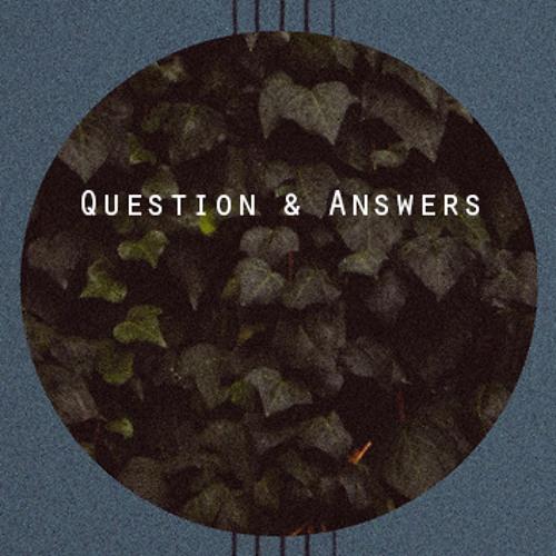 Seek Answers (Original)