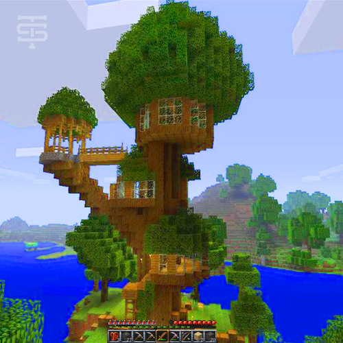 building at the treehouse